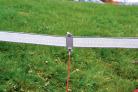 przewod-laczacy-tasme-do-40mm-z-elektryzatorem.2