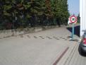 ograniczniki-predkosci-speed-stop-zolty-ze-srubami-montazowymi.1