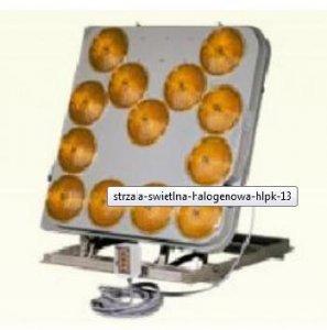 strzala-swietlna-halogenowa-hlpk-13-z-przewodowym-pilotem-mozliwosc-podlaczenia-2-lamp-blyskowych