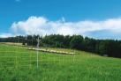 siatka-dla-owiec-palik-z-pojedynczym-gwozdziem-dl-50m-wys-90cm.2